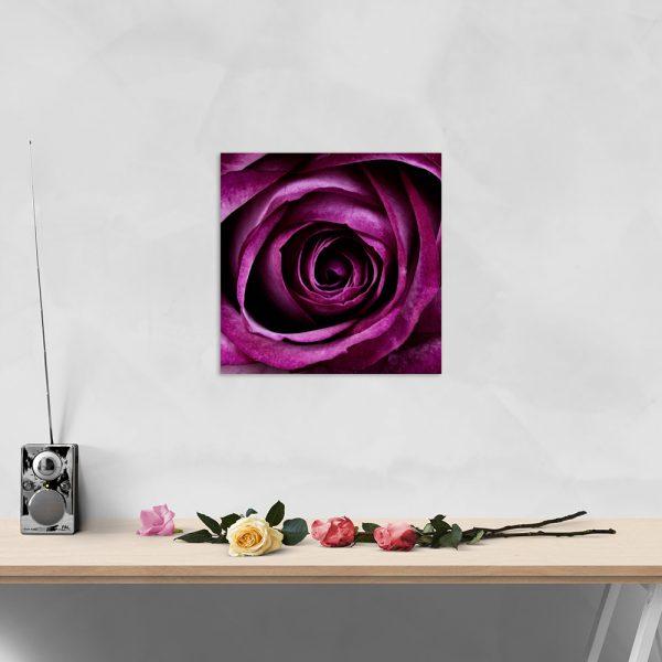 Самостоятельный сегмент модульной картины Фиолетовая страсть