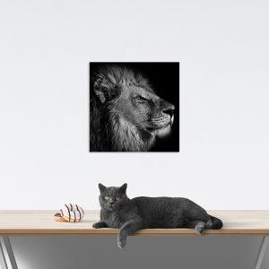 Самостоятельный сегмент модульной картины Лев