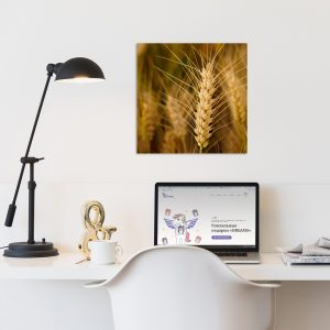 Самостоятельный сегмент модульной картины Пшеница