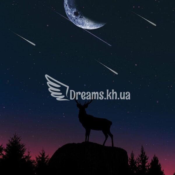 Интерьерный постер Ночной звездопад