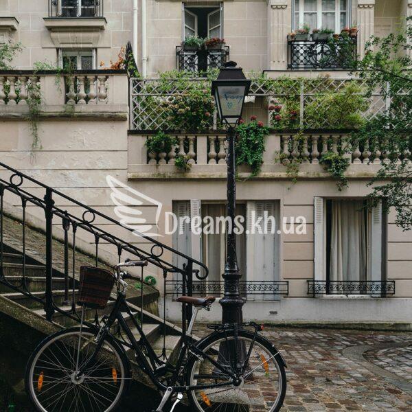 Інтер'єрний постер Паризький провулок