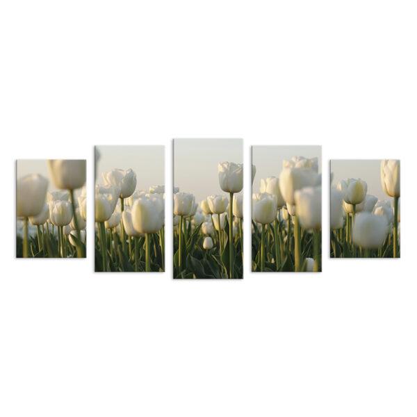 Модульная фотокартина на холсте Белые тюльпаны