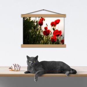 Оригінальний постер-картина - Маки